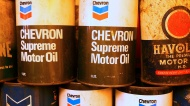 The Ins and Outs of Oil Storage: What is the Shelf Life of Oil?