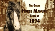 For the Love of Human Ingenuity: Understanding the Great Horse Manure Crisis of 1894