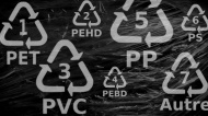 Plastic by Numbers: What Do the Recycling Codes Mean?