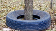 The Trouble With Tires — A Brief History of Synthetic Rubber